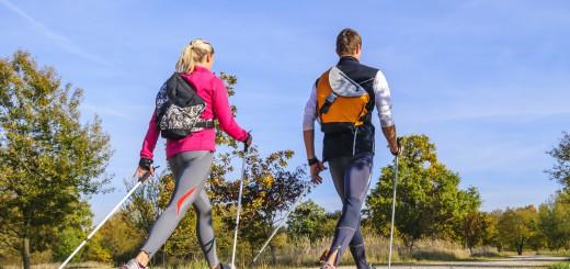 nordic walking fit gesund schlank warum nw der ideale sport ist. Black Bedroom Furniture Sets. Home Design Ideas