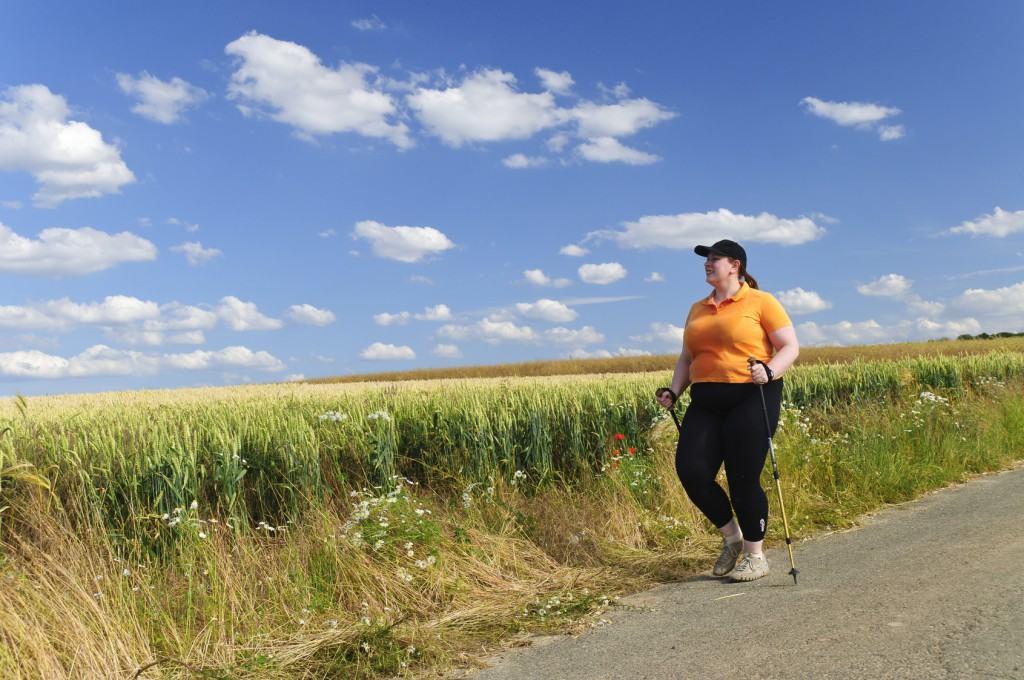 Nordic Walking Crosstrainer Erfahrungen